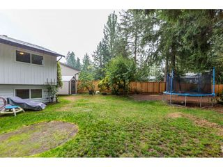Photo 20: 20263 46A Avenue in Langley: Langley City House for sale : MLS®# R2403097