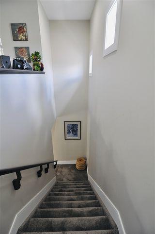 Photo 12: 10822 72 Avenue in Edmonton: Zone 15 House for sale : MLS®# E4191236