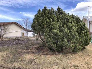 Photo 6: 10315 108 Avenue: Westlock Vacant Lot for sale : MLS®# E4194868