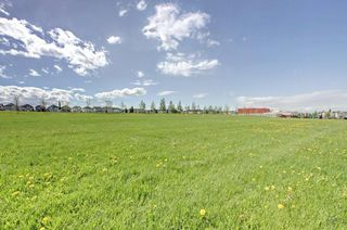 Photo 33: 205 BRIDLEWOOD Common SW in Calgary: Bridlewood Detached for sale : MLS®# C4300004