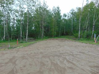 Photo 6: Lot 6 27331 Township Road 481: Rural Leduc County Rural Land/Vacant Lot for sale : MLS®# E4218147