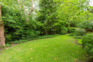 """Photo 36: 14 4285 SOPHIA Street in Vancouver: Main Townhouse for sale in """"WELTON COURT"""" (Vancouver East)  : MLS®# R2470478"""