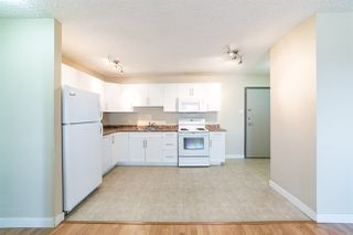 Photo 10: 1206 9710 105 Street in Edmonton: Zone 12 Condo for sale : MLS®# E4215016