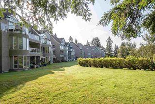 """Photo 18: 309 999 BERKLEY Road in North Vancouver: Blueridge NV Condo for sale in """"BERKLEY TERRACES"""" : MLS®# R2401987"""