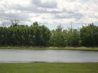 Photo 19: 2332 WEST PORT Close in Edmonton: Zone 59 Mobile for sale : MLS®# E4200455