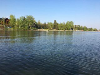 Photo 42: 619 6th Street: Rural Wetaskiwin County House for sale : MLS®# E4203421