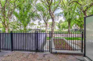 Photo 24:  in Edmonton: Zone 15 Condo for sale : MLS®# E4203974
