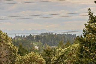 Photo 32: 385 IVOR Rd in Saanich: SW Prospect Lake Single Family Detached for sale (Saanich West)  : MLS®# 833827