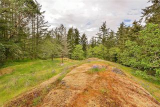 Photo 21: 385 IVOR Rd in Saanich: SW Prospect Lake Single Family Detached for sale (Saanich West)  : MLS®# 833827