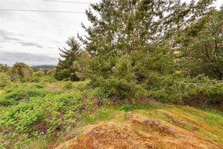 Photo 24: 385 IVOR Rd in Saanich: SW Prospect Lake House for sale (Saanich West)  : MLS®# 833827