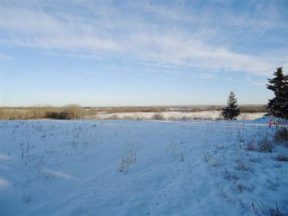 Photo 40: 53273 RGE RD 215: Rural Strathcona County House for sale : MLS®# E4181663