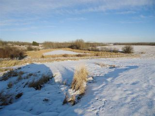 Photo 38: 53273 RGE RD 215: Rural Strathcona County House for sale : MLS®# E4181663