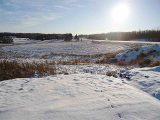 Photo 39: 53273 RGE RD 215: Rural Strathcona County House for sale : MLS®# E4181663