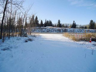 Photo 33: 53273 RGE RD 215: Rural Strathcona County House for sale : MLS®# E4181663