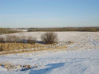 Photo 36: 53273 RGE RD 215: Rural Strathcona County House for sale : MLS®# E4181663