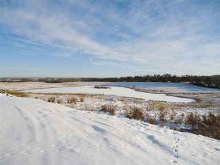 Photo 32: 53273 RGE RD 215: Rural Strathcona County House for sale : MLS®# E4181663