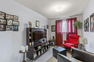 Photo 14: 6N 203 LYNNVIEW Road SE in Calgary: Ogden Row/Townhouse for sale : MLS®# A1017459