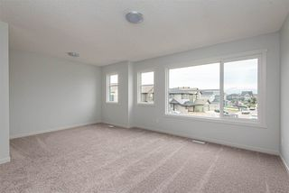 Photo 24: 22319 94 Avenue NW in Edmonton: Zone 58 House for sale : MLS®# E4211644