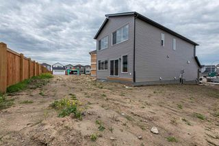Photo 30: 22319 94 Avenue NW in Edmonton: Zone 58 House for sale : MLS®# E4211644