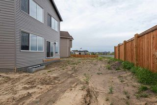 Photo 31: 22319 94 Avenue NW in Edmonton: Zone 58 House for sale : MLS®# E4211644