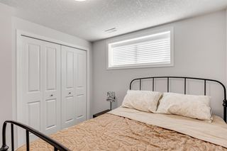 Photo 37: 81 Panora View NW in Calgary: Panorama Hills Detached for sale : MLS®# A1029681
