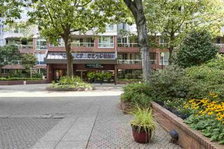 Photo 2: 314 518 MOBERLY ROAD in Vancouver: False Creek Condo for sale (Vancouver West)  : MLS®# R2404067