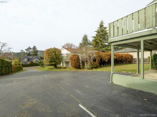 Photo 22: 4375 Torquay Dr in VICTORIA: SE Gordon Head Single Family Detached for sale (Saanich East)  : MLS®# 828634