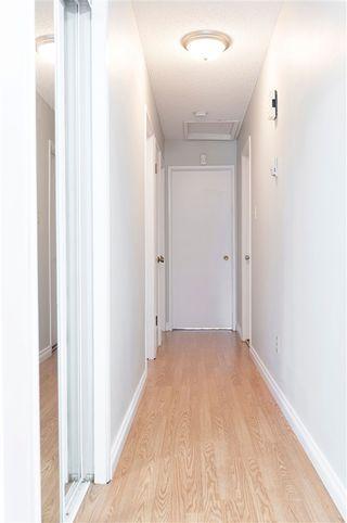 Photo 15: 4604 37 Avenue in Edmonton: Zone 29 House for sale : MLS®# E4200724