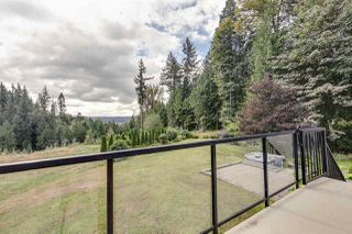Photo 29: 31078 GUNN Avenue in Mission: Mission-West House for sale : MLS®# R2499835