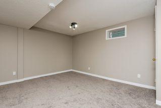 Photo 16: 11157 53 Street in Edmonton: Zone 09 House for sale : MLS®# E4179060