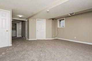 Photo 17: 11157 53 Street in Edmonton: Zone 09 House for sale : MLS®# E4179060