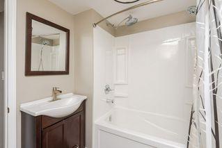 Photo 19: 11157 53 Street in Edmonton: Zone 09 House for sale : MLS®# E4179060