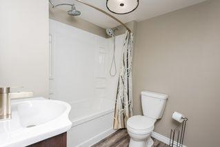 Photo 18: 11157 53 Street in Edmonton: Zone 09 House for sale : MLS®# E4179060