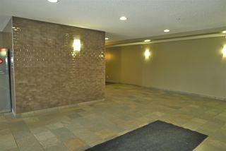 Photo 17: 303 4403 23 Street in Edmonton: Zone 30 Condo for sale : MLS®# E4186956