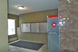 Photo 16: 303 4403 23 Street in Edmonton: Zone 30 Condo for sale : MLS®# E4186956