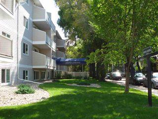 Photo 25: 212 10529 93 Street in Edmonton: Zone 13 Condo for sale : MLS®# E4194932