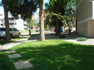 Photo 24: 212 10529 93 Street in Edmonton: Zone 13 Condo for sale : MLS®# E4194932