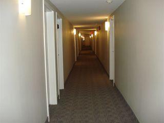 Photo 14: 212 10529 93 Street in Edmonton: Zone 13 Condo for sale : MLS®# E4194932