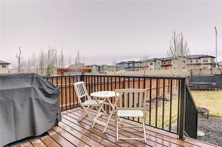 Photo 29: 187 SAGE HILL Green NW in Calgary: Sage Hill Detached for sale : MLS®# C4295421
