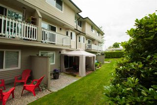 """Photo 37: 32 7640 BLOTT Street in Mission: Mission BC Townhouse for sale in """"Amberlea"""" : MLS®# R2469610"""
