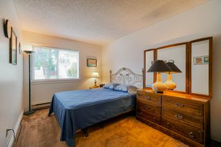 Photo 14: 104 7150 133RD Street in Surrey: West Newton Townhouse for sale : MLS®# R2408067