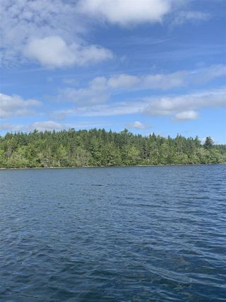 Photo 5: Acreage East Chezzetcook Road in East Chezzetcook: 31-Lawrencetown, Lake Echo, Porters Lake Vacant Land for sale (Halifax-Dartmouth)  : MLS®# 202015825