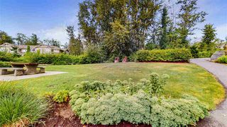"Photo 37: 62 7059 210 Street in Langley: Willoughby Heights Townhouse for sale in ""Alder At Milner Heights"" : MLS®# R2486866"