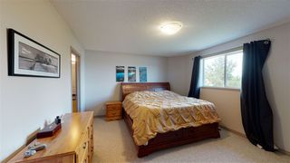 Photo 19: 8604 177 Avenue in Edmonton: Zone 28 House for sale : MLS®# E4213364