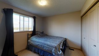 Photo 23: 8604 177 Avenue in Edmonton: Zone 28 House for sale : MLS®# E4213364