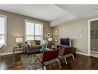 Photo 8: 414 1110 3 Avenue NW in Calgary: Hillhurst Apartment for sale : MLS®# A1033168