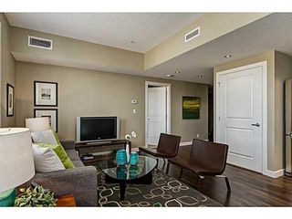 Photo 11: 414 1110 3 Avenue NW in Calgary: Hillhurst Apartment for sale : MLS®# A1033168