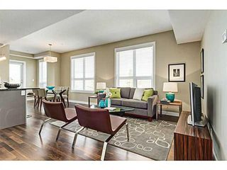 Photo 12: 414 1110 3 Avenue NW in Calgary: Hillhurst Apartment for sale : MLS®# A1033168