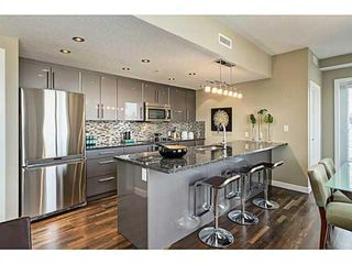 Photo 9: 414 1110 3 Avenue NW in Calgary: Hillhurst Apartment for sale : MLS®# A1033168