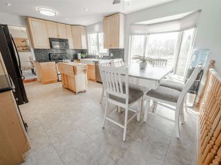 Photo 15: 250 50448 RGE RD 221: Rural Leduc County House for sale : MLS®# E4214450